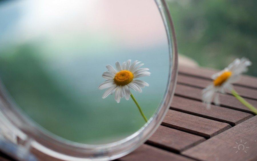 Мир зеркало открытие Валентины Красиной